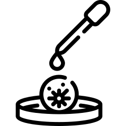 bacteria, petri, virus, dish, dropper, transmission icon icon