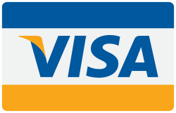 buy, financial, finance, business, pay, cash, credit, donation, visa, checkout, payment, card icon icon