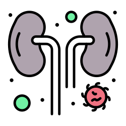 disease, kidney, infected, infection icon icon
