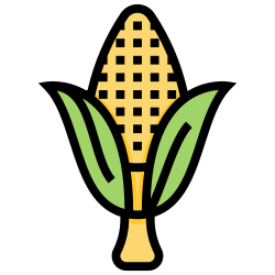 grilled, vegetable, corn, organic, plant icon icon