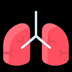 human, medical, anatomy, organ, lung icon icon