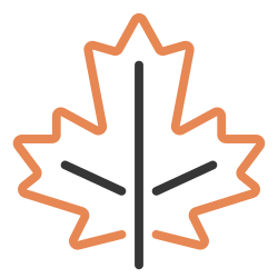 leaf, nature, maple, autumn, fall, october, dry icon icon