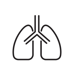 lungs, coronavirus, covid icon icon