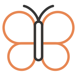 nature, fly, butterfly, spring, insect, wings icon icon