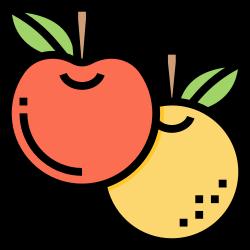 orange, plant, fruit, organic, vitamin icon icon