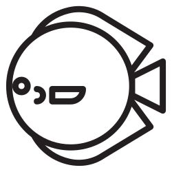 pet, animals, animal, water, fish, discus icon icon