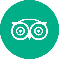 round icon, circle, tripadvisor, travel icon icon