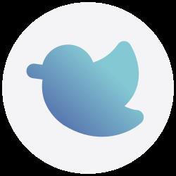social media, twitter, logo, social icon icon