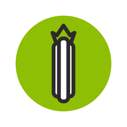 vegetable, cucumber, fruit, green, organic icon icon