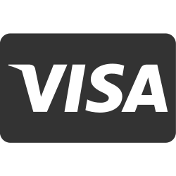 visa, service, cash, checkout, card, payment method, online shopping icon icon