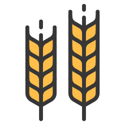 wheat, harvest, plant, food, grain, crop, barley icon icon